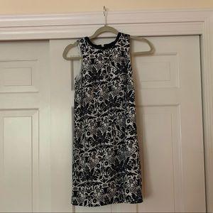 Ann Taylor loft shift dress